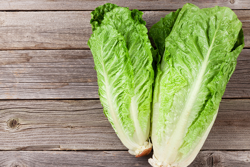 Watch Out for Romaine Lettuce – Again