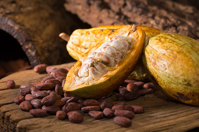 Nestlé Announces New Chocolate Made Entirely from Cacao Fruit